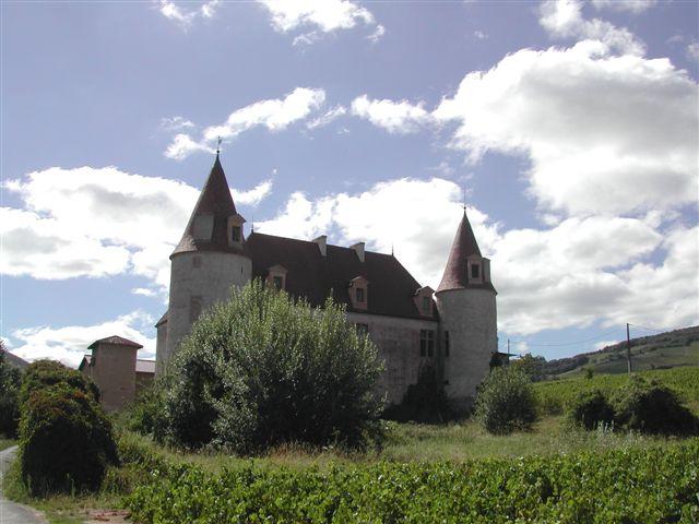 chateau-de-la-palud
